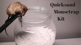 Testing Out The Quicksand Mouse Trap Kit Sold On Amazon.