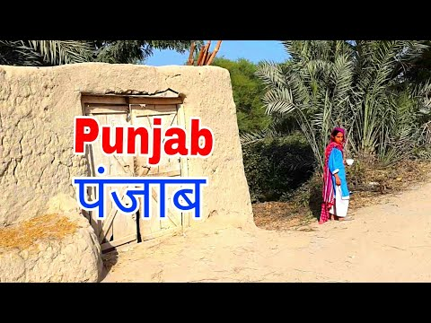 Driving To Punjab पंजाब | Pakistan Village Tours | Natural Rural Scene
