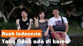 Video buah indonesia yang tidak ada di korea (feat. ibuku) , woo seok - 6 MP3, 3GP, MP4, WEBM, AVI, FLV Februari 2019