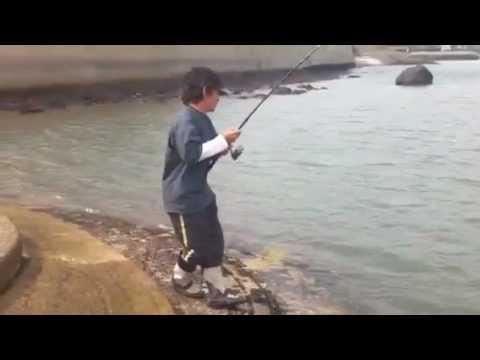 佐賀県有明海でシーバス釣り中に巨大モンスターに遭遇!
