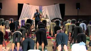 Rod Stryker Yoga: Bandha and the Energetics of Yoga Practice