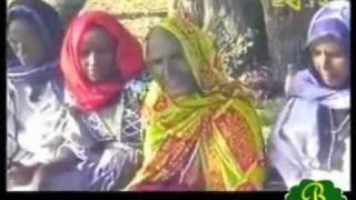 Rayaa Azebo Oromos Part 2