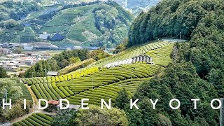 Wazuka is a beautiful hidden Japanese tea town in Kyoto. Perfect day trip to take from Kyoto, Osaka, Nara or any of the surrounding Kansai prefectures.I really love this town and think it is just absolutely beautiful! If you are a tea lover(especially macha) and love nature then this is the perfect place for you to travel to in Kyoto :)Other Kyoto Hidden Spots/Kyoto Travel Videoshttps://www.youtube.com/watch?v=ftL5lbkuwZoAccess To Wazuka (copied from their website)http://wazukanko.com/waziehae/wp-content/themes/twentyeleven/pdf/WAZUKA_Introduction(english).pdf●From Nara(about 15 mnins to Kamo)Nara Station-[about 15 mins Yamato Road Express)]→Kamo●From Kyoto(about 1 hour to Kamo)Kyoto Station-[about 35 mins by Miyako Road Expresss]→Kizu(transfer)- [about 6 mins by Yamato Road Express)]→Kamo●From Osaka(about 56 mins to Kamo)Osaka Station-[about 12 mins]→Tenoji-[about 30 mins]→Nara-[about14 mins]→Kamo― ◎By bus from Kamo(about 20 mins to arrive in Wazuka)From West exit of Kamo take the Nara Transportation Bus「toOsugi」 about 20 mins to arrive at 「Wazuka Yama no ie」Join me on Patreon for bonus videos, live streams and much more! ☺https://patreon.com/internationallyME-------------------------------------------------------------➱ CONNECT WITH ME INSTAGRAMhttps://instagram.com/internationallymeTWITTERhttps://twitter.com/NZ2JAPAN➱ MUSICSummer Sky  BohkehI Wish  IconFeel The Same Way  Pomo