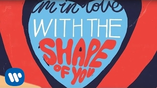 Ed Sheeran - Shape Of You [Official Lyric Video] cover