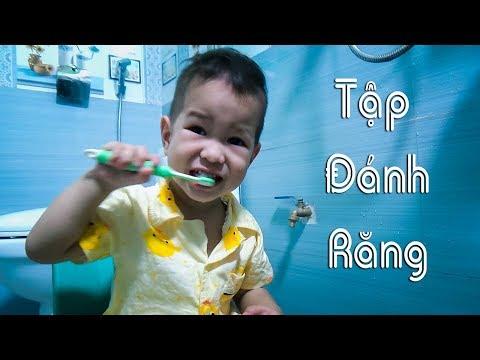 Trẻ đánh răng