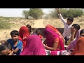 new Rajasthani desi video New Marwadi    shitla mata mela live video Rajasthani culture waptubes