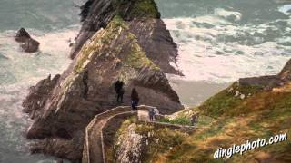 Dingle Ireland  city pictures gallery : You must visit Dingle Ireland before you die