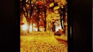 Autumn Leaves YouTube video