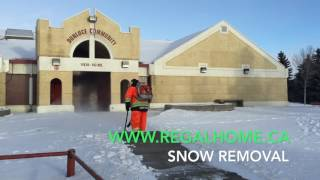 8. Snow Removal with a STIHL BR 600 Backpack Blower