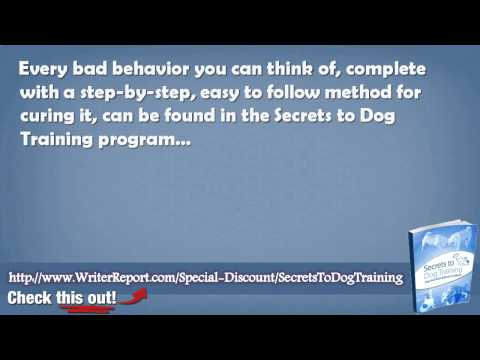 The Secrets To Dog Training Review – Does Secrets To Dog Training Really Work
