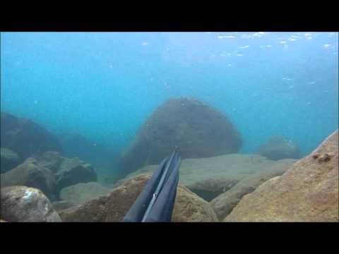 Pesca in Apnea – Alba con l'ora legale – Genova 30/03/14