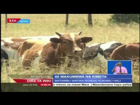 Zaidi ya watu 60 wakumbwa na kimeta katika eneo bunge la Rongai