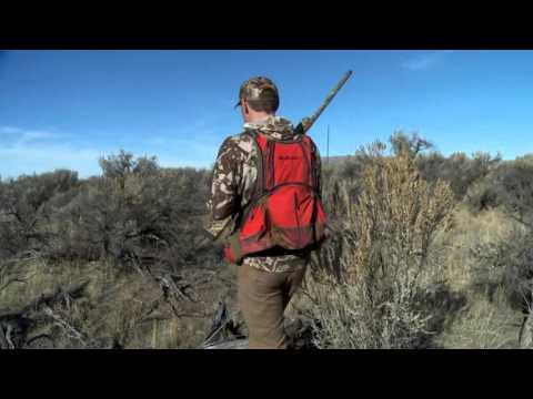 Steven Rinella and First Lite's Ryan Callaghan Hunt Quail in Idaho