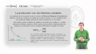 Microeconomía II - La Tecnología De Producción (7) - Alfonso Rosa García