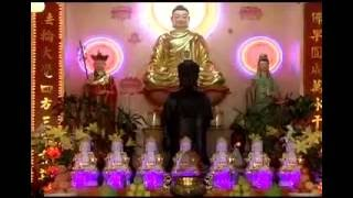 Đạo Phật ngày nay (10/08/2008) - TT. Thích Nhật Từ