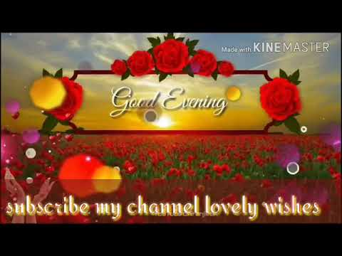 Good evening messages - Good Evening Videos WhatsApp Status Beautiful Wishes For You