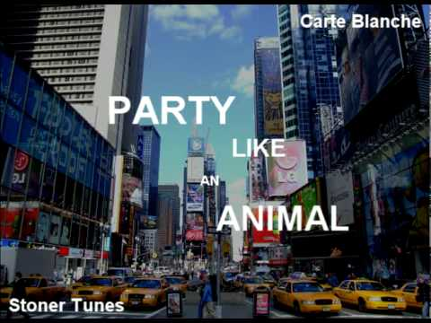 Tekst piosenki Will.I.Am - Party Like An Animal  ft. LMFAO & Eva Simons po polsku