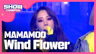 Video Show Champion EP.294 MAMAMOO - Wind Flower MP3, 3GP, MP4, WEBM, AVI, FLV Maret 2019