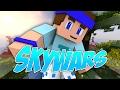 Ce skywars est cool ! - SKYWARS #44