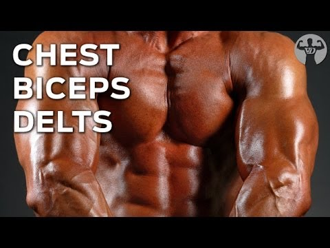 8-8-16 Day1 Muscle Building Workout, Chest, Biceps, Delts…