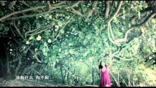 Cecilia Cheung - Official MV 2011曾经 官方版 -张柏芝