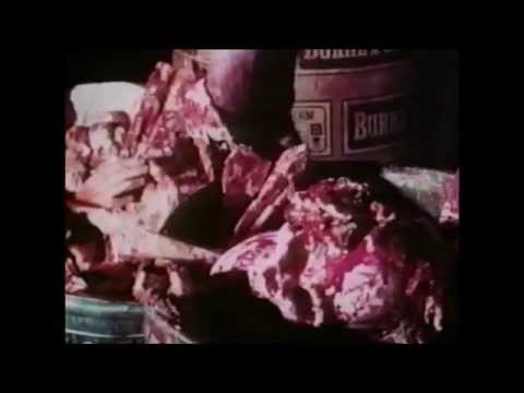 The Corpse Grinders (1971) - Trailer