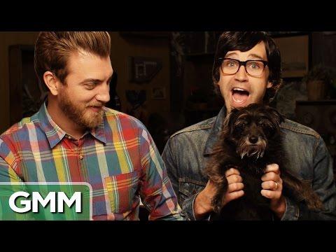 We Try Dog Massage