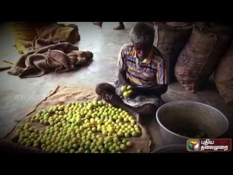 Samaniyarin-Kural-Promo-17-09-2016-Puthiya-Thalaimurai-TV