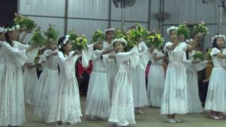 Giáo họ Giuse Khai hoa mừng kính Đức Mẹ