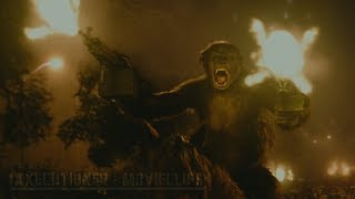 Dawn Of The Planet Of The Apes  2014  Fight Battle Scenes  Edited