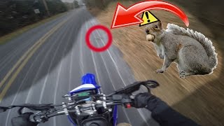 HE JUST JUMPED IN FRONT OF ME!! (CRASH)