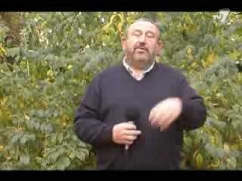 Tadeusz Drozda - Dyżurny Satyryk Kraju 9