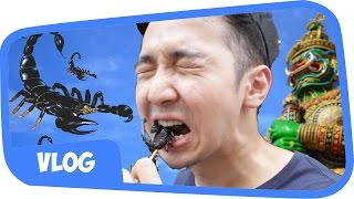 Video MAKAN KALAJENGKING !! THAILAND BANGKOK VLOG MP3, 3GP, MP4, WEBM, AVI, FLV November 2017