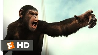 Nonton Rise of the Planet of the Apes (2011) - Battle for the Bridge Scene (4/5) | Movieclips Film Subtitle Indonesia Streaming Movie Download