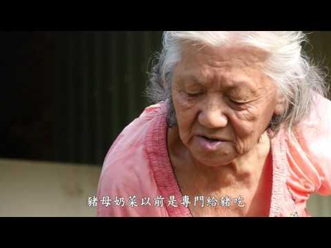 【台江】尋訪台江古早味~野菜