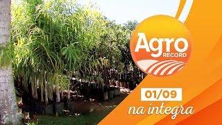 Agro Record na íntegra - 01/Setembro/2019 - Bloco 1