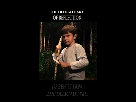 The Infinity Chamber  - The Delicate Art Of Reflection