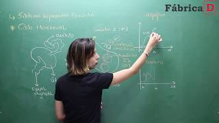 SISTEMA REPRODUTOR FEMININO-VÍDEO 5-PROF CAMILA CAVALIERI