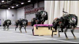 Download Youtube: MIT cheetah robot lands the running jump