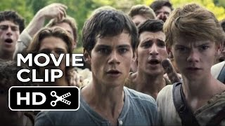 Nonton The Maze Runner Movie Clip   Good Job  2014    Dylan O Brien Movie Hd Film Subtitle Indonesia Streaming Movie Download