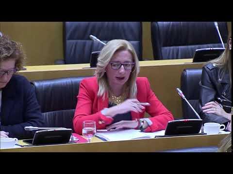 """Dueñas: """"Este Gobierno ha cumplido con el compromiso alcanzado con el informe que sustenta el pacto de Estado contra la violencia de género con una inversión histórica de 408 millones de euros"""""""