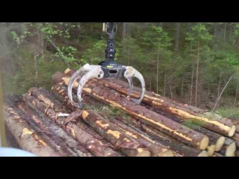 Volvo Fh16 750 Loading Timber In Sweden