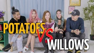 Video Potato Box: Potatoes VS Willows MP3, 3GP, MP4, WEBM, AVI, FLV Desember 2018