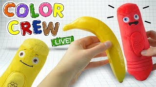 Learn the colors today by coloring the different fruits for kids with the Color Crew LIVE Plush Toys. You're favorite color learning heroes, the Color Crew, come to life to help teach your children all there is about colors. Watch as they color in the different fruits right before your eyes! Whoever knew learning colors could be this much fun. For all your favorite color learning content from the Color Crew, be sure to subscribe today! Thanks for watching.Subscribe to the BabyFirst TV Youtube Channel for more children's shows and cartoons for kids:http://www.youtube.com/user/BabyFirstTV?sub_confirmation=1Hope you enjoyed this episode on BabyFirstTV!For more videos for toddlers click here: http://www.youtube.com/user/BabyFirstTV?sub_confirmation=1About BabyFirst TVOn BabyFirst TV, your baby can learn everything under the sun,  from ABC to Animals, colors to shapes, and so much more! Our programming  is among the best at helping children learn education basics before entering the school environment. Here we house one of the internet's largest collections of educational resources, nursery rhymes for children, and cartoons for your baby. Check out some of our favorite programming, including the Color Crew, Harry the Bunny, Rainbow Horse, Vocabularry, Notekins and more! Our content is intended help grow with your child. Enjoy our huge collection of nursery rhymes for your children, that you and baby can sing together. From teaching your baby color recognition, to helping your child learn socialization with toddler games, BabyFirst TV, will be here. Make sure to subscribe to check out the latest from BabyFirst TV!