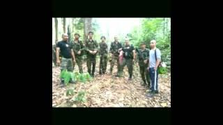Nonton Kanang Anak Langkau The Iban Warrior Team Film Subtitle Indonesia Streaming Movie Download