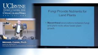 BioSci 94: Organisms To Ecosystems. Lec. 13. Fungi