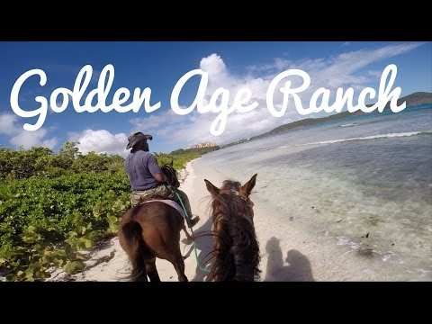 Horseback Riding at Golden Age Ranch!