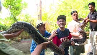 Video BROWNIS - Igon Ko Takut Sama Iguana ??? (10/3/19) Part 2 MP3, 3GP, MP4, WEBM, AVI, FLV Maret 2019