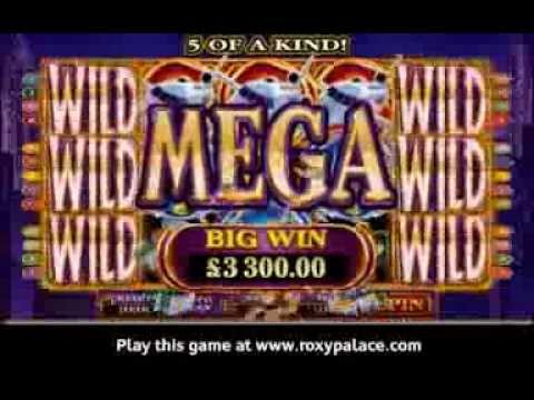 High Society slot game at Roxy Palace
