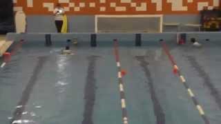 Соревнования по прикладному плаванию 2015 (видео №8)